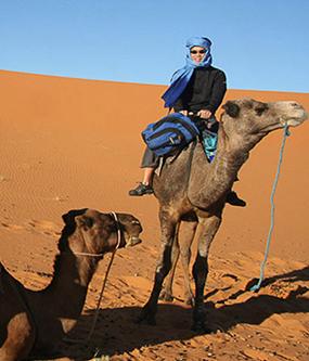 camel trekking in Sahara desert